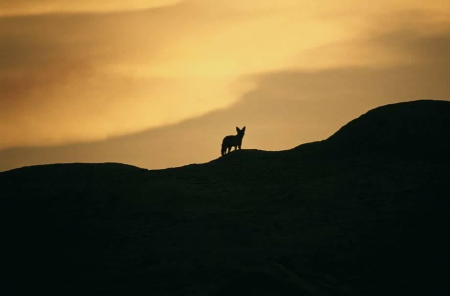 Namibia - Impressionen