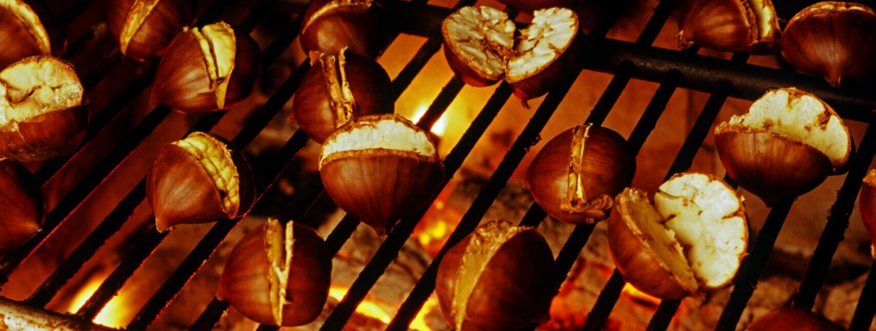 Kripperlroas im Salzkammergut