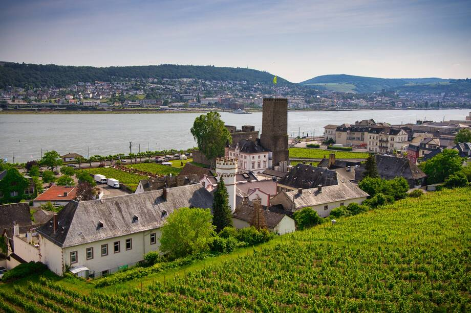 4* MS Klimt - Flusskreuzfahrt auf dem goldenen Rhein